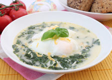 Soup of spinach Royalty Free Stock Images