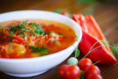 Soup of sweet peppers and tomatoes Royalty Free Stock Photography