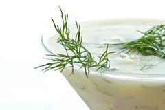 Soup tarator Royalty Free Stock Photo