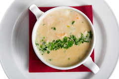 soup thick royaltyfria bilder