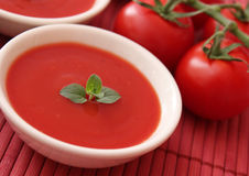 Soup of tomatoes Royalty Free Stock Photography