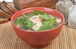 Soup of the trout Stock Images