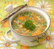 Soup of vegetabes Stock Image
