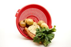 Soup vegetable in the sieve Stock Images