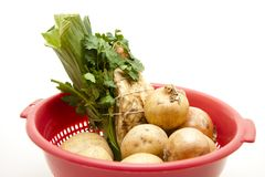 Soup vegetable in the sieve Royalty Free Stock Images
