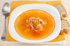 Soup with vegetables Stock Photos
