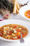 Soup with vegetables and beans. Vegan soup with vegetables and white beans Royalty Free Stock Image