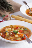 Soup with vegetables and beans. Vegan soup with vegetables and white beans Royalty Free Stock Photos
