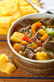 Soup with vegetables and meat. Tasty soup with vegetables and meat in the pot Stock Image
