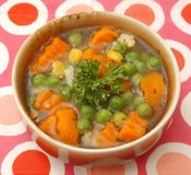 Soup of vegetables Royalty Free Stock Photography