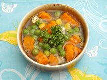 Soup of vegetables Royalty Free Stock Image