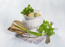 Soup with vegetables Royalty Free Stock Photography