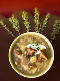 Soup of wild mushrooms with cream and thyme on brown board Stock Photos