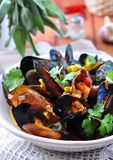 Soup of wild mussels with white wine, vegetables, sage and coriander Stock Images