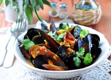 Soup of wild mussels with white wine, vegetables, sage and coriander Royalty Free Stock Image