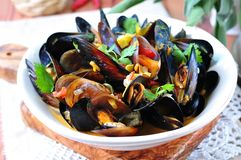Soup of wild mussels with white wine, vegetables, sage and coriander Stock Image