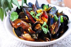 Soup of wild mussels with white wine, vegetables, sage and coriander Royalty Free Stock Photography