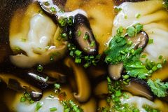 Soup wonton chicken broth with mushrooms and herbs, dark background. royalty free stock photography