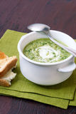 Soup with yoghurt Stock Images