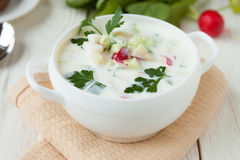 Soup with yogurt and vegetables, okroshka Russian Stock Photos