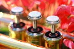 Soupapes de perle d'une trompette Photo stock