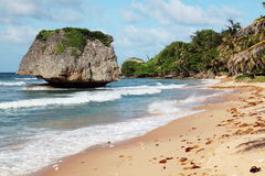 The soupbowl, Barbados. The soupbowl, where surfers surf the atlantic coast of the island Stock Image