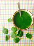 Soupe à épinards Image libre de droits