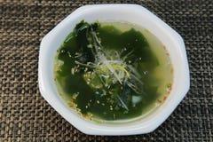 Soupe à algue Photographie stock