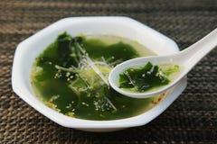 Soupe à algue Image libre de droits