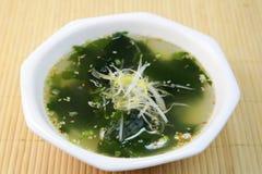 Soupe à algue Photos stock