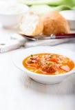 Soupe à boulette de viande Image stock