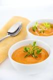 Soupe à carottes Photographie stock