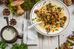 Soupe à champignons avec de la crème et des champignons de couche Photographie stock