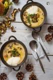 Soupe à champignons avec les champignons de couche sauvages Image libre de droits