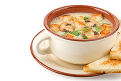 Soupe à champignons dans un plan rapproché de cuvette Photo stock