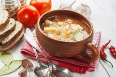Soupe à chou Images stock