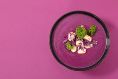Soupe à chou photos stock