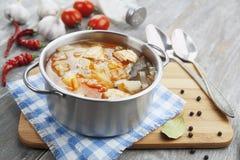 Soupe à chou avec de la viande Photographie stock libre de droits