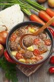 Soupe à chou avec des boulettes de viande et des tomates Image stock