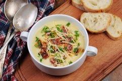 Soupe à fromage avec le lard Image stock