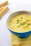 Soupe à fromage avec le poulet, les pommes de terre et le safran des indes Images stock
