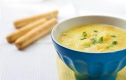 Soupe à fromage avec le poulet, les pommes de terre et le safran des indes Photographie stock libre de droits
