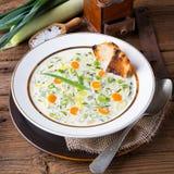 Soupe à fromage de poireau photographie stock libre de droits