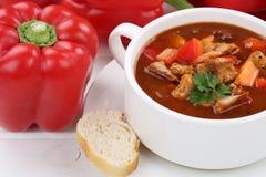 Soupe à goulache avec de la viande et le paprika en plan rapproché de tasse Images stock