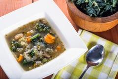 Soupe à haricot blanc et à chou frisé Image stock