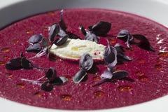 Soupe à la betterave (Borscht) garnie avec Basi pourpré Images stock