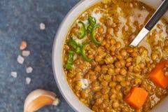 Soupe à lentille végétarienne indienne, mung dal Conce indien d'épice de nourriture photos stock