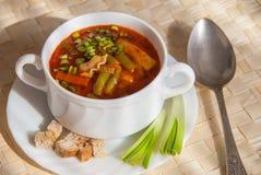 Soupe à macaronis de tomate Photos stock