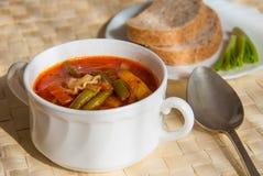 Soupe à macaronis de tomate Photos libres de droits
