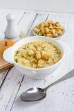 Soupe à oignon avec du fromage photographie stock